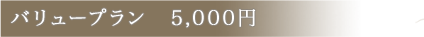 バリュープラン 5,000円