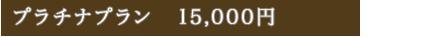 プラチナプラン 13,500円